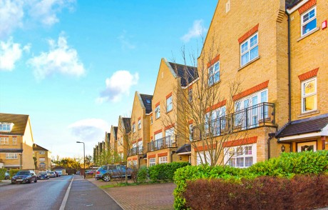 Osier Crescent, Muswell Hill, N10 - Daniel Ford